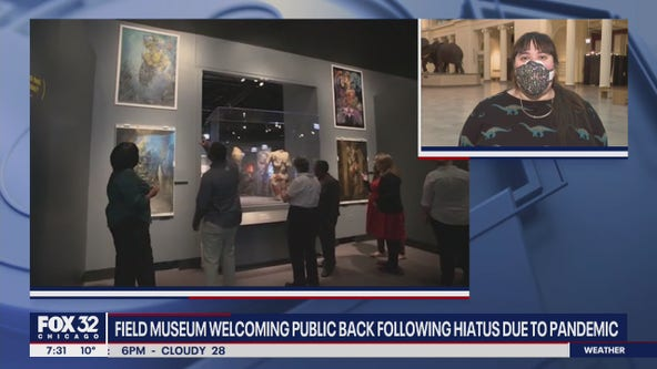 Field Museum welcomes back public following hiatus due to pandemic