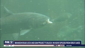 Lock and dam project hopes to block invasive species from Great Lakes