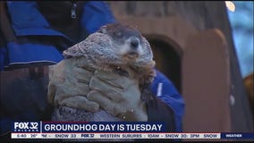 Woodstock officials hope Groundhog Day celebrations will bring levity to trying times