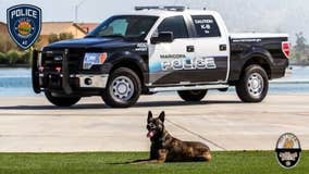 Maricopa police officer suspended after K-9 dies in hot car