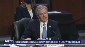 FBI chief warns violent 'domestic terrorism' growing in US