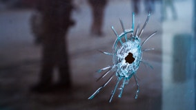 Man wounded after gunman fires through window of Lisle apartment