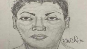 Police search for woman who tried to take child from mother in Brighton Park