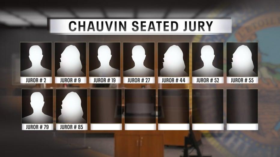 Chauvin trial jury 3-17