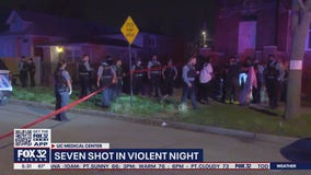 7 shot after fight in Englewood: police