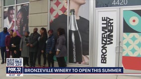 Bronzeville Winery to open on Chicago's South Side: 'More than just a restaurant'