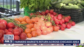 Farmers markets begin to bloom across Chicagoland