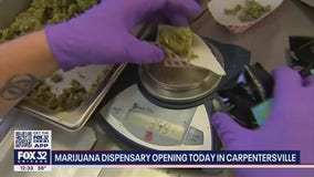 First marijuana dispensary in northern Kane County opens its doors