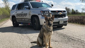Lake County Sheriff's Office introduces newest canine deputy