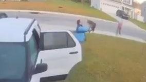 Bobcat attacks woman, husband throws it across yard in viral video