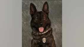 Mesquite K9 officer killed while chasing armed robbery suspects