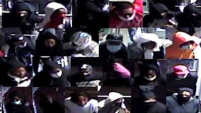 Police release video of suspects in Back of the Yards burglary