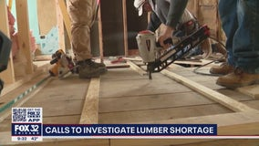 Building industry calls out timber industry as lumber prices continue to spike