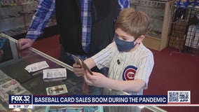 Baseball card sales boom during the pandemic
