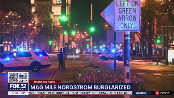 2 arrested in overnight break-ins at Mag Mile Nordstrom, South Side business