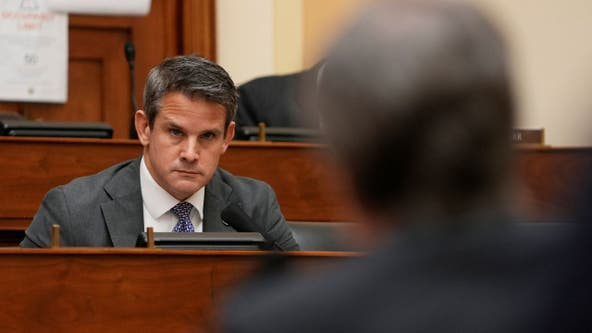 Illinois congressman Adam Kinzinger backs Cheney over party criticism