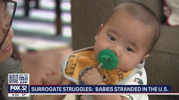 Babies stranded in suburban Chicago, thousands of miles from parents, because of bureaucratic delays