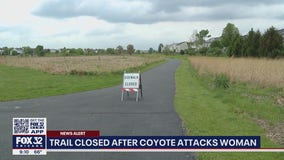 Woman walking her dog fends off coyote attack in Bolingbrook