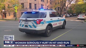 Police investigating Lake View hit-and-run that left woman seriously injured