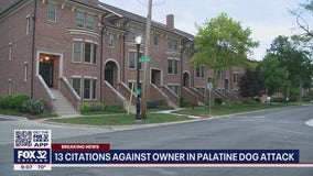 Dog owner cited, dog walker charged after attack in Palatine