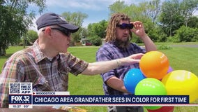 Color-blind suburban Chicago men get new glasses so they can see colors for the first time