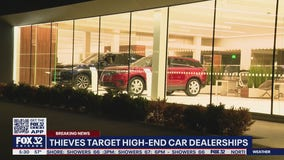 High-end car dealerships struck by thieves in Hinsdale