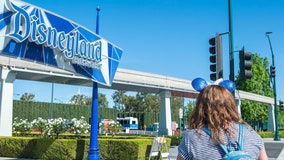 Disneyland to introduce $100 sandwich
