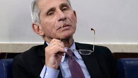Fauci 'not convinced' COVID-19 developed naturally