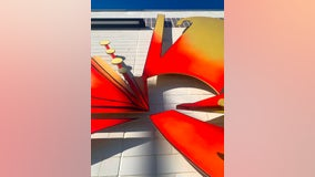 CTA debuts new art installation at Austin bus stop