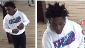 Police seek suspect wanted in Brown Line robbery