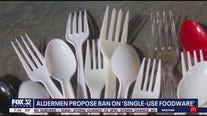 Chicago ordinance proposed to ban restaurants from 'single-use foodwear'