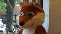 Woman wearing fox costume chases daughter down Chicago streets