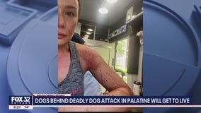 Dogs who attacked 2 people, killed dog in Palatine get to live