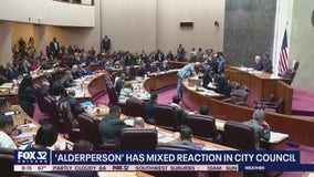 'Alderperson' proposal receives mixed reaction in City Council