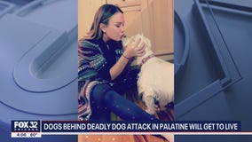 2 dogs registered as emotional support animals accused of deadly dog attack in Palatine will get to live