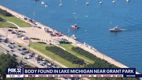 Body pulled from Lake Michigan near Grant Park