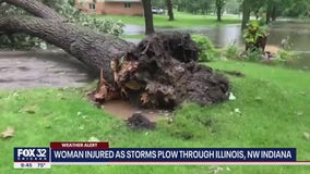 Two tornadoes hit suburban Chicago on Saturday, National Weather Service confirms