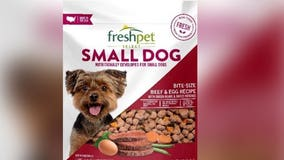 Pet food recall due to potential salmonella contamination