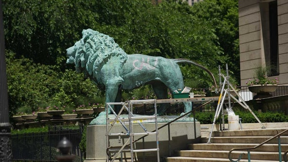 Iconic lion outside Chicago Art Institute tagged with spray paint