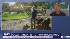 Cesar Milan talks new series 'Better Human Better Dog'