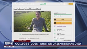 GoFundMe raises over $72k for Chicago student killed by stray bullet while sitting on CTA train