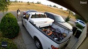 Nest camera captures moment DoorDash driver's car rolls away