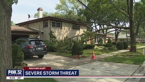 Tree falls on Morton Grove home amid severe weather: 'We were very lucky'