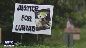 Husband of Wayne village president accused of killing neighborhood dog