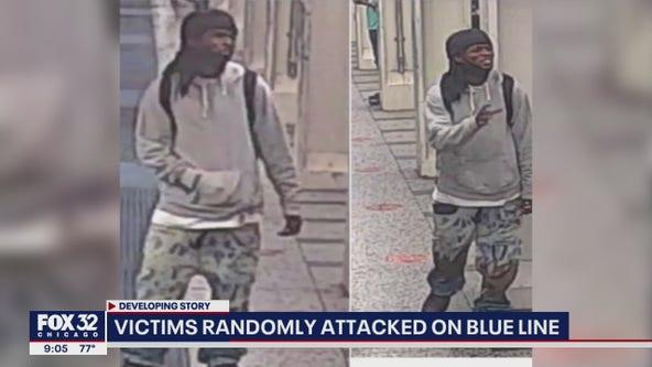 Victims randomly attacked on CTA Blue Line