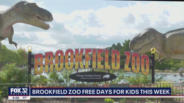 Free admission for kids at Brookfield Zoo through Wednesday