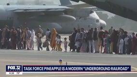 Task Force Pineapple: Teacher, ex-Green Beret assisting Afghanistan evacuations