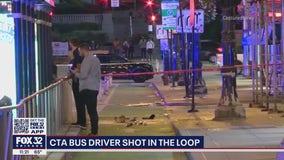CTA bus driver shot in the Loop, suspected shooter in custody