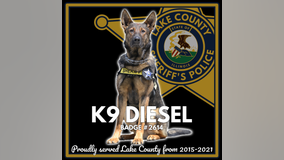 Lake County mourns the loss of K9 Diesel: 'the closest partner a deputy could have'