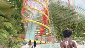 Who wants a waterslide park in downtown Chicago? Contest winners push new ideas for Thompson center